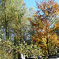 L'automne en ville ..... et un peu de couture