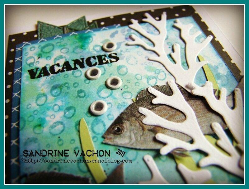 Sandrine VACHON DT blog PCC (3)