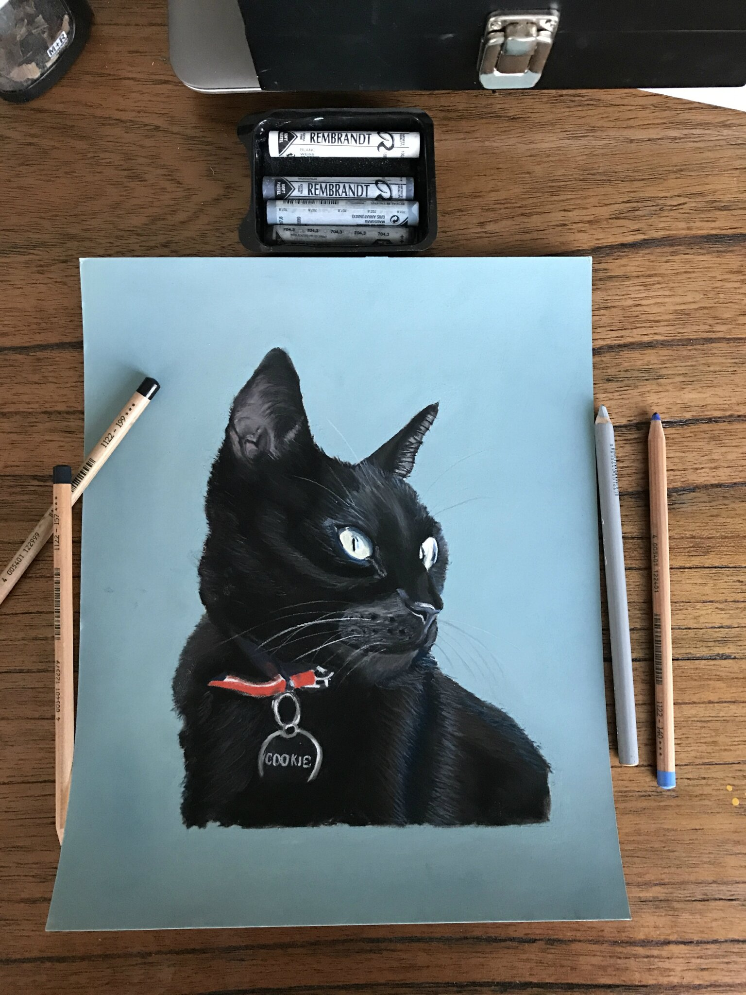 Pastels secs : le chat