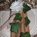 table canelle, nature 003