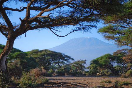 Kenya__1025__2