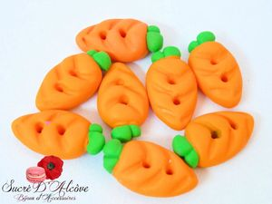 Boutons carottes (1)