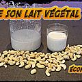 Trilogie de recettes végétales : lait - cookies - yaourts .