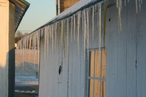 yellow_icicles
