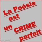 crime parfait
