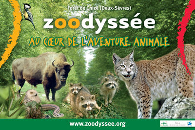 Zoodyssee2