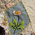 crazy daisy c2CILE franconie (2)