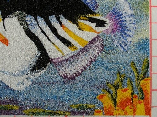 cadre poisson 9
