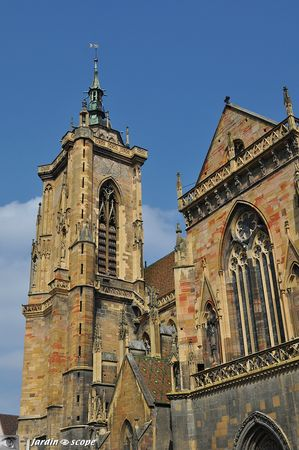 Cathdrale-Colmar
