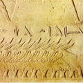 Anes d'Egypte, de Mésopotamie et d'autres orients