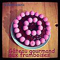 Gâteau gourmand aux framboises (fruits et bonbons)