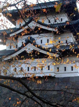 japan's fall 16