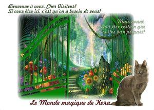 Le Monde magique de Kora chez Gloewen et Scrat (1)
