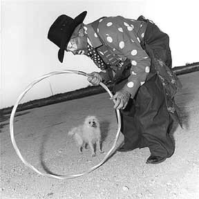 famous_rodeo_clown_Quail_Dobbs_urges_his_dog_Phyllis_through_an_oversized_Hoop
