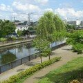 Shinkawa River