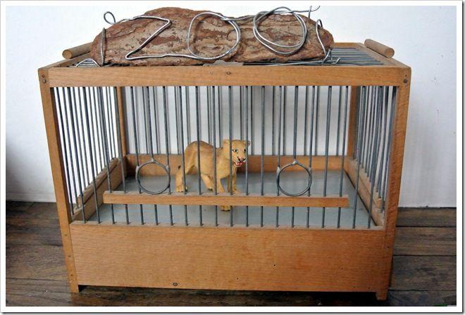 cage-lionne-ok2