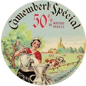 Camembert_Sp_cial