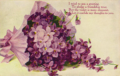 lavendars