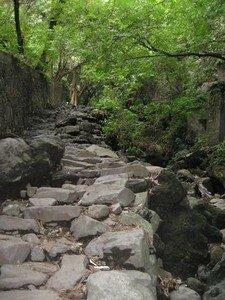 cuernavaca_2007