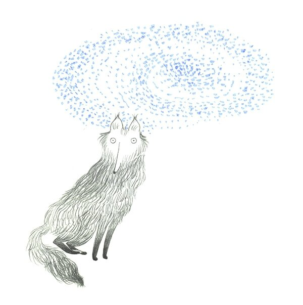 chiens magique 1