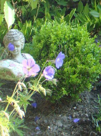 jardin-g