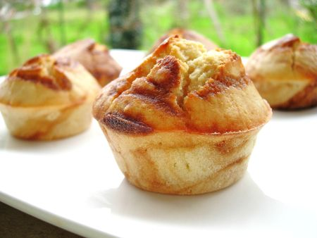 muffins_marbr_s__2_