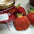 14-fraises www.passionpotager.canalblog.com