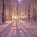 Fête de yule - solstice d'hiver - 21 ou 22 décembre - le rituel