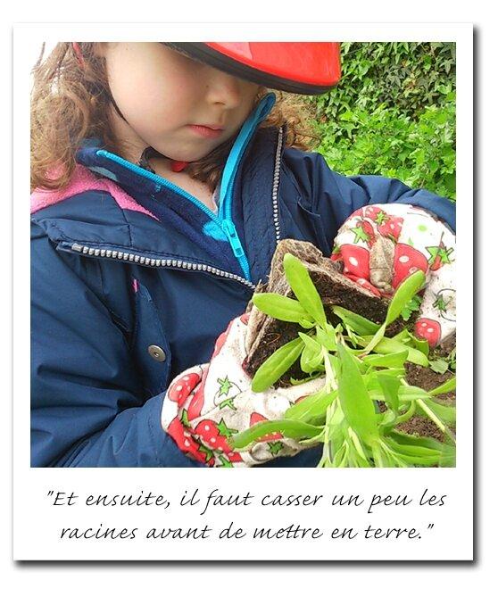 diapo_jardin_4