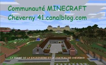 CARTE VISITE MINECRAFT