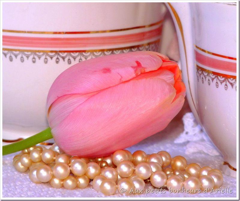 Porcelaine ancienne (13)