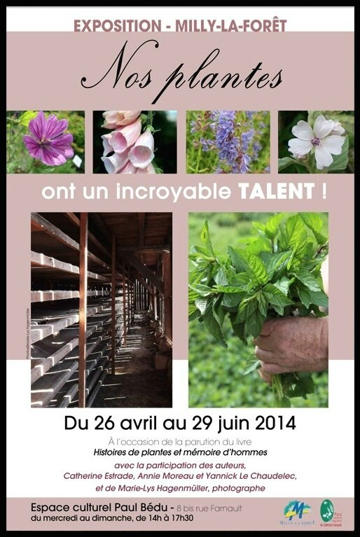 milly la foret nos plantes ont un incroyable talent affiche