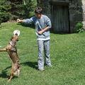 2008 05 12 Kapy qui saute pour attraper le ballon a Martin