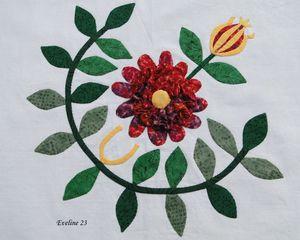 Eveline 23