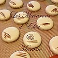 Les macarons d'eléa et martine