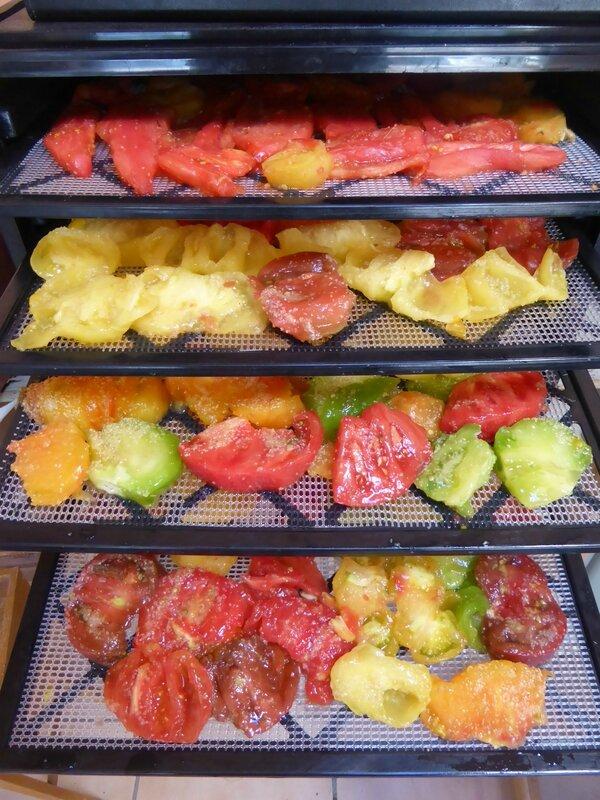 22-tomates séchées (3)