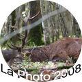 La Photo 2008