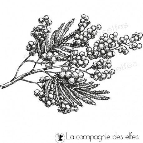 tampon-mimosa