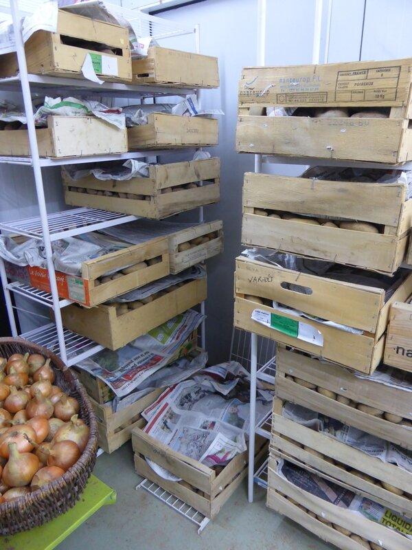 10-réserve pommes de terre