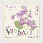 LLP-J007-la-violette-fiche-lilipoints
