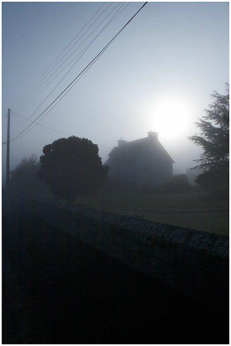 06-Fog