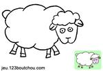 animal_mouton