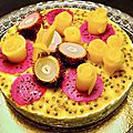 Le cheese cake globe-trotteur (exotic cheese fiagive)