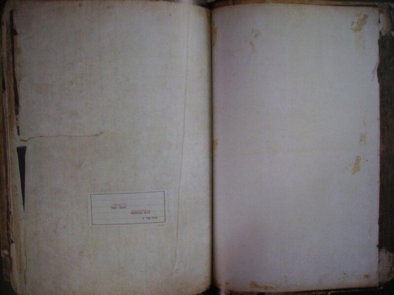 IMGP0238