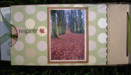 L_automne__16_