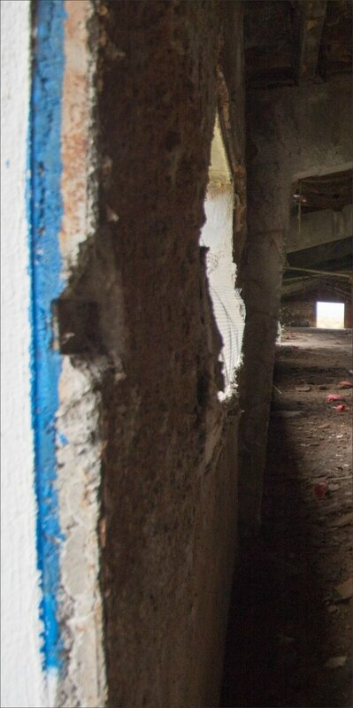 Haut Aragon juin 2017 J3 Monegros GA 9 élevage abandonné