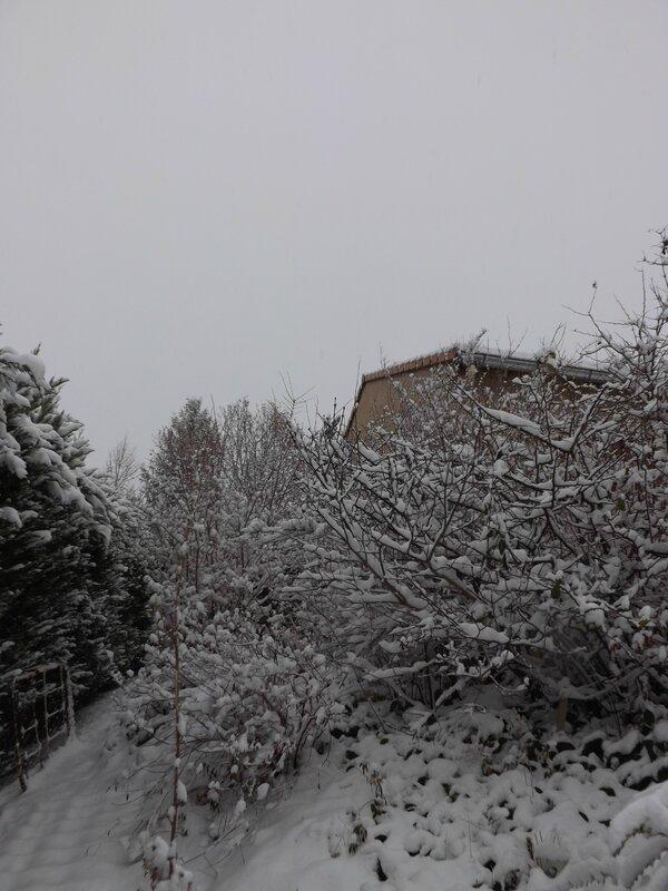 Neige 1er décembre 2017 (19)