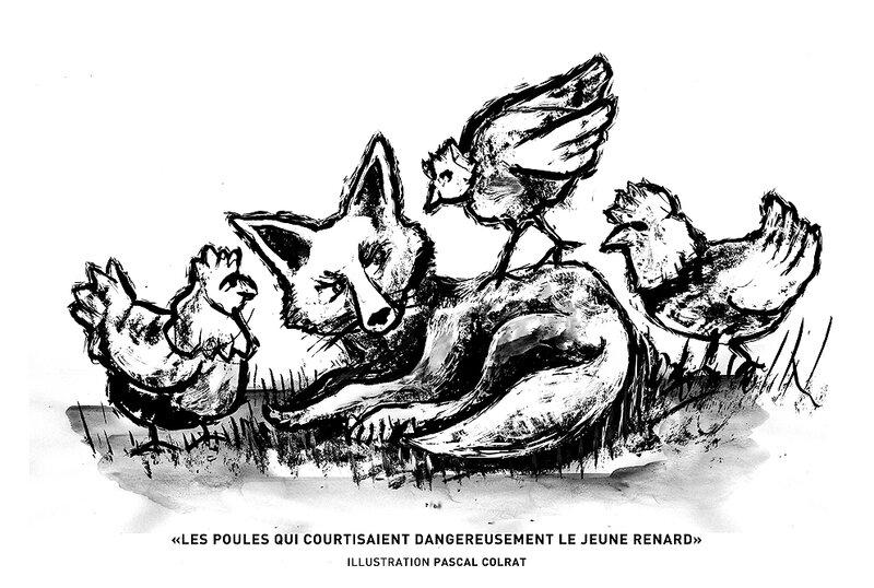 le jeune renard