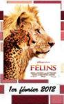 felins_france