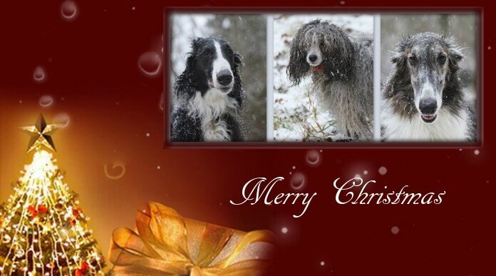 Merry-Christmas-Messages-For-Facebook-12